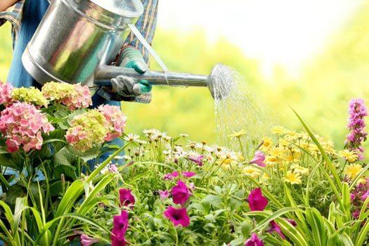 техническая вода для садоводства